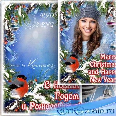 Праздничная рамка для фотошопа со снегирем - С Новым Годом и Рождеством