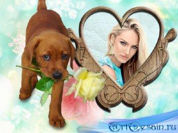 Фоторамка - Милый щенок с цветком