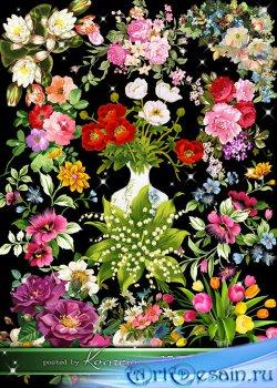 Нарисованные цветы, букеты и цветочные композиции - png клипарт на прозрачн ...