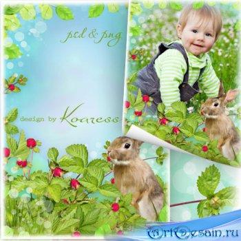 Детская рамка для фотошопа - На  полянке с зайчиком