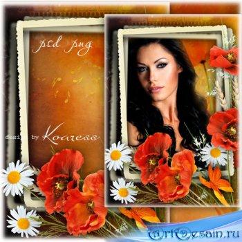 Цветочная рамка для фотошопа с маками и ромашками - Краски летнего заката