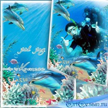 Летняя морская рамка для фото с кораллами и дельфинами - В лазурном океане