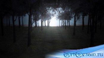 Футаж - Лунная дорога / Misty Moonlight HD