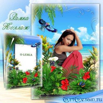 Рамка коллаж для фотошопа - Король тропических цветов