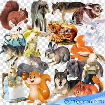 Клипарт - Зайцы, волки , белки