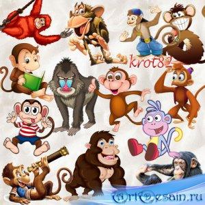 Клипарт PNG – Веселые обезьяны