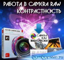 Работа в Camera Raw - Контрастность (2016)