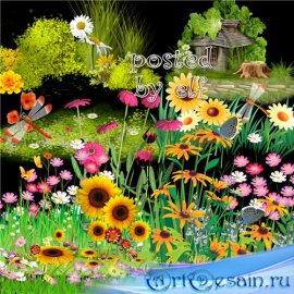 Клипарт - Лужайки, трава с цветами в PNG