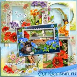 Сборник рамок в png с летними цветами