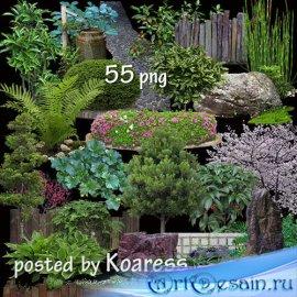 Элементы ландшафтного дизайна в png - Растения, камни, клумбы, изгороди