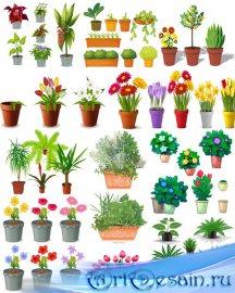 Клипарт Рисованные цветы и растения