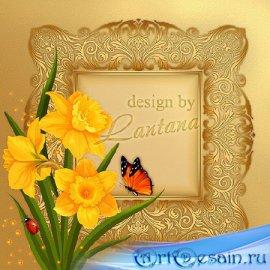 PSD исходник - Нарциссов жёлтый водопад, на солнышко похожий
