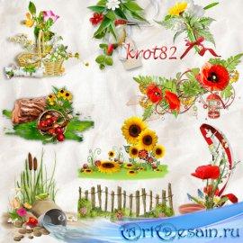 Летние кластеры с цветами, зеленой травой и ягодой