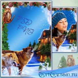Рамка для фото - Зимний ночной пейзаж с волками