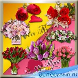 Клипарт - Очарование цветов