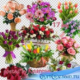 Png клипарт для фотошопа - Букеты цветов