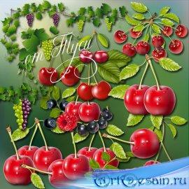 Умыта дождем, солнцем согрета сочная ягода щедрого лета - Клипарт