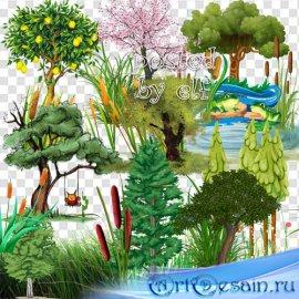 Клипарт png - Деревья, трава, камыши