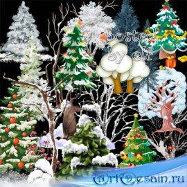 Зимний клипарт в png - Ёлочки и деревья