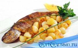 Фотошоп png - Рецепты из рыбы