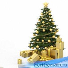 Красивые Png - Новогодние елки