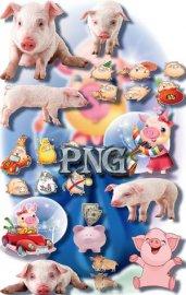 Клипарты картинки - Веселые свинки
