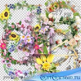 Подборка png рамок-вырезов для фотошопа - Цветочная коллекция 2