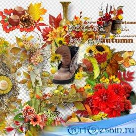 Осенние элементы и кластеры без фона – Разноцветная осень