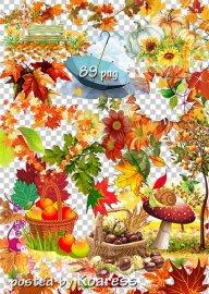 Клипарт png на прозрачном фоне - Осенние композиции, листья, элементы пейза ...