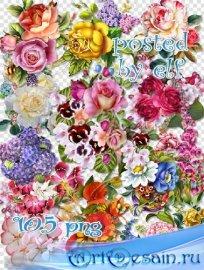 Клипарт png - Цветы на прозрачном фоне