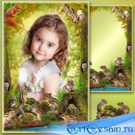 Рамка для Фотошопа - В старом лесу