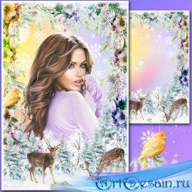 Рамка для Фотошопа - Зимние краски