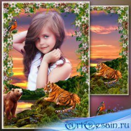 Рамка для фото с пейзажем - Амурский закат